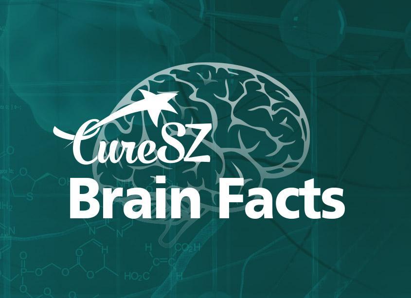 CureSZ Brain Facts logo